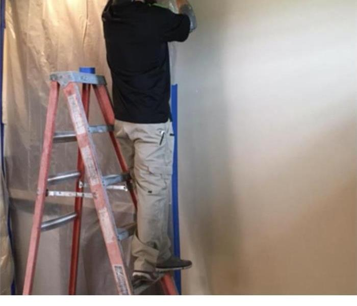 Mold Remediation Removing Persistent and Reoccurring Mold Growth