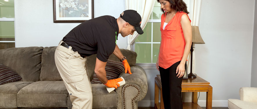 West Jordan, UT carpet upholstery cleaning